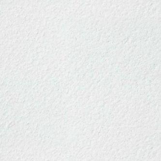 Armstrong Parafon Hygien 600x600 mm inleg