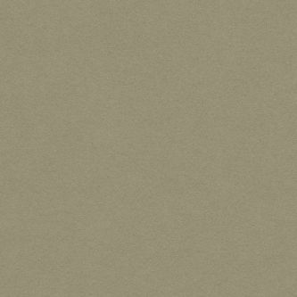 Rockfon beige Cork 600x600 mm doorzak plafondplaat