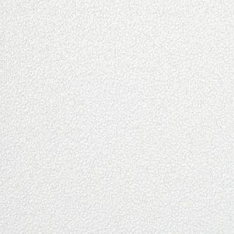 Ecophon Focus E T24 White Frost 600x2400x20 mm doorzak