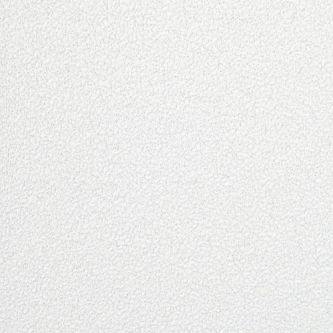 Ecophon Focus E T15 White Frost 600x1200x20 mm doorzak