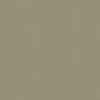 Rockfon beige Cork 600x600 mm doorzak plafondplaat