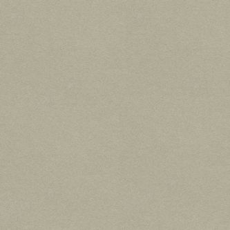Rockfon grijs Hemp 600x600 mm doorzak plafondplaat